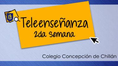SEGUNDA SEMANA DE TELEENSEÑANZA: CONSULTAS